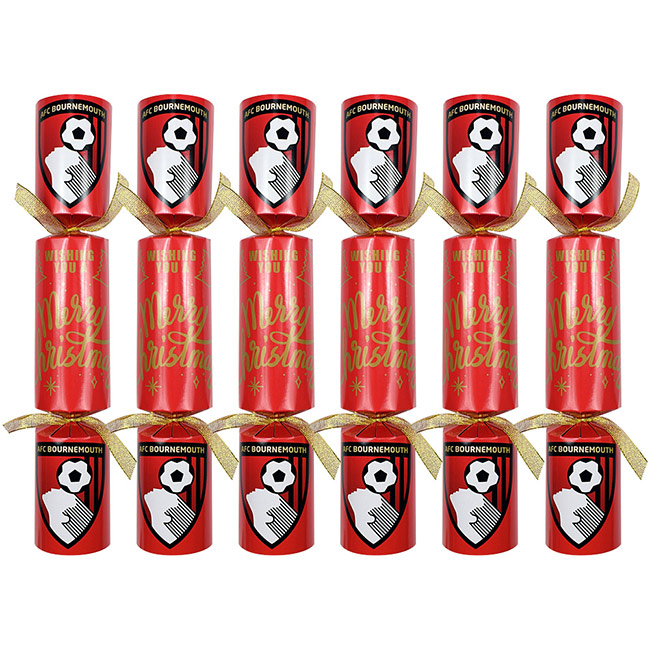 Christmas Crackers - 6 Pack