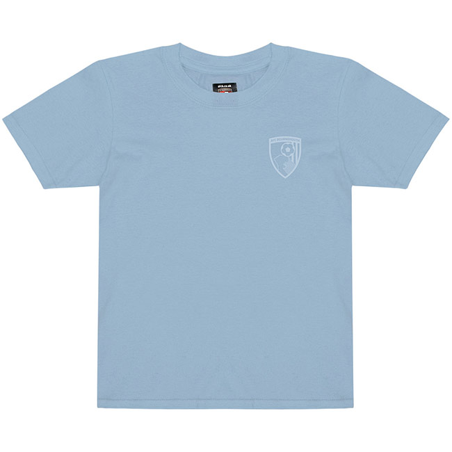 Youths Summer T Shirt - Blue